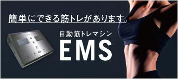 EMS indepth